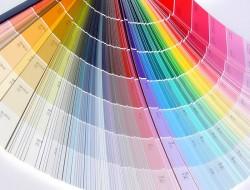 variété de couleurs pour la peinture