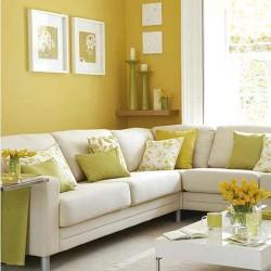 peinture couleur moutarde pour les murs