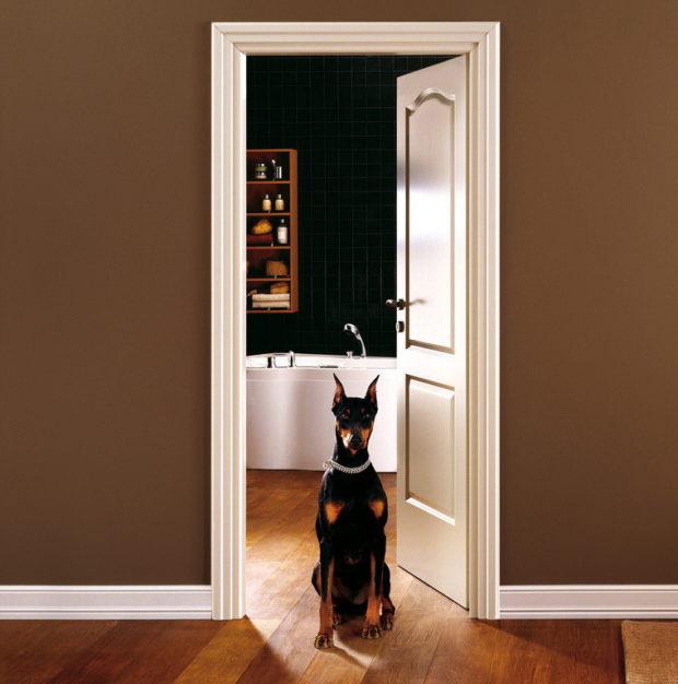 Plateaux pour portes intérieures: 5 conseils pour choisir les plateaux
