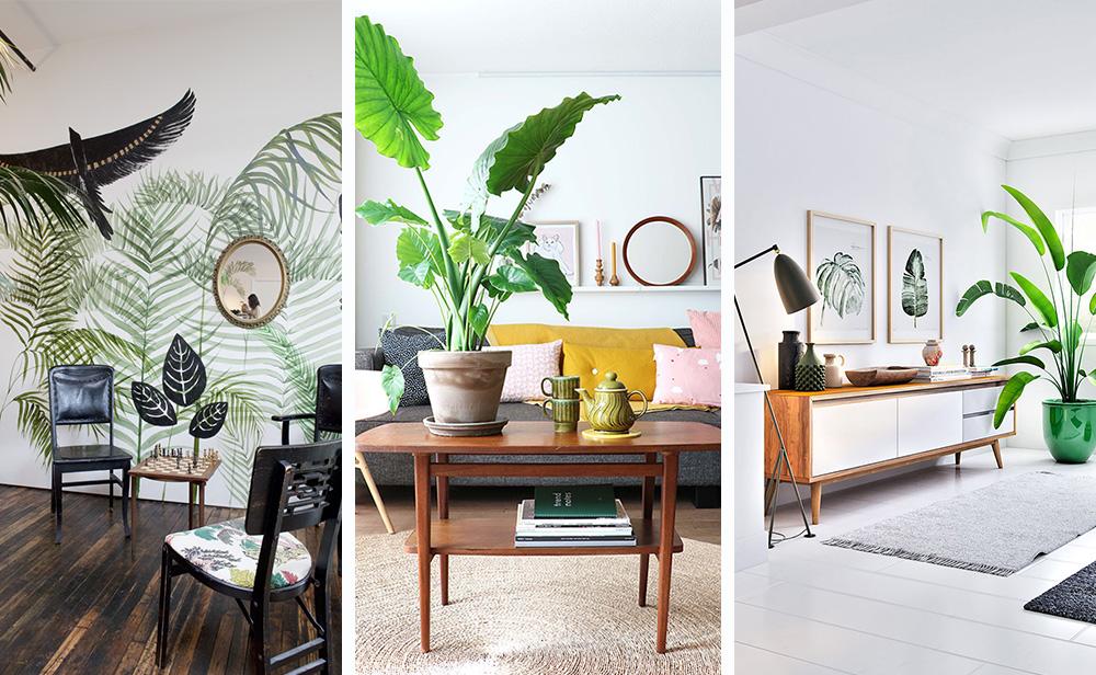 Style tropical à l'intérieur - 6 conseils pour créer + photo