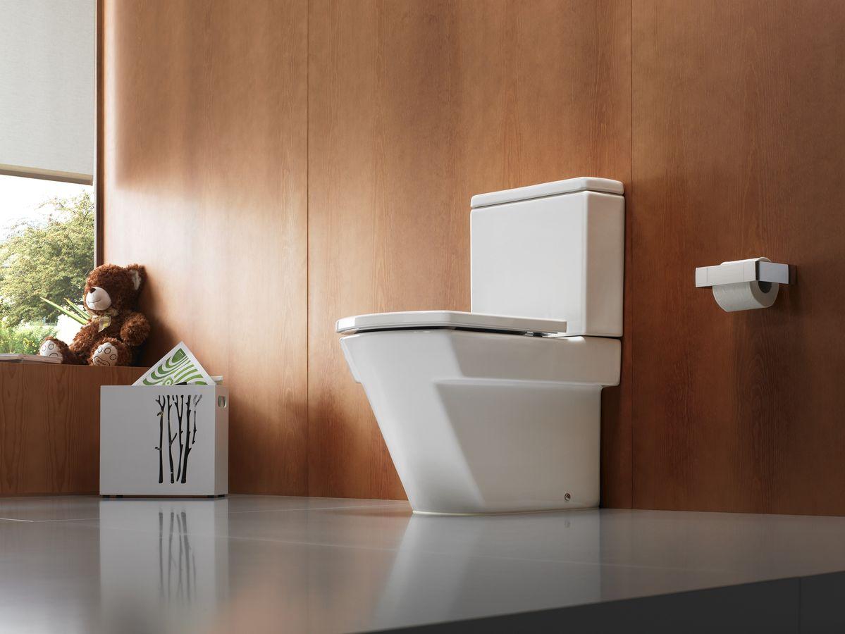 Quelles sont les toilettes et comment les choisir correctement