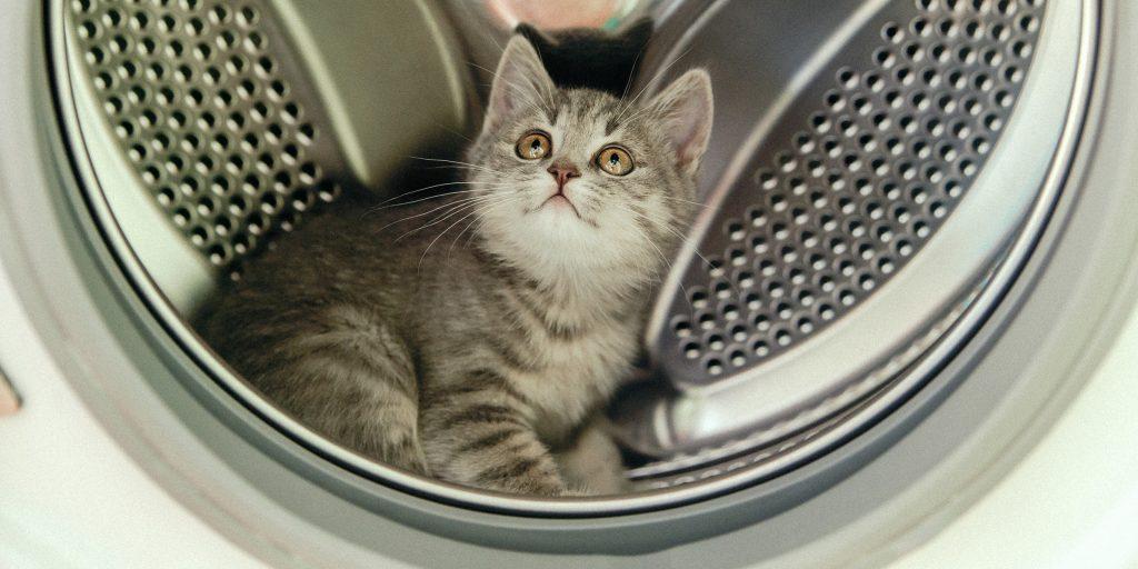 7 façons de nettoyer votre lave-linge de l'odeur, de la saleté et du tartre